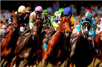 Kentucky Derby 2010 Race