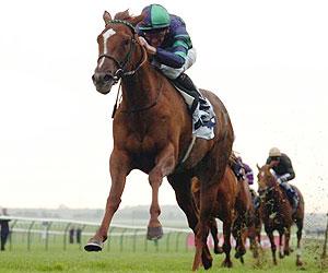 Modern Horse Racing